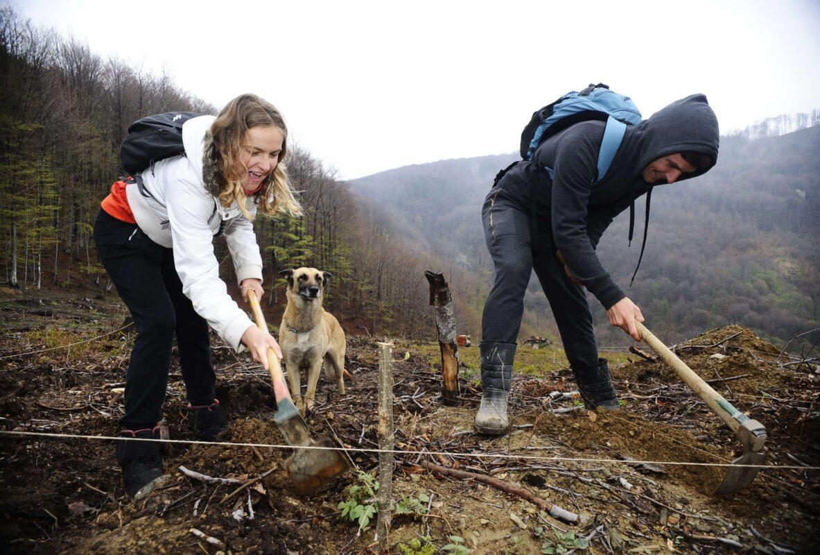 JYSK podržao novu akciju pošumljavanja zone u Poreču s 1.500 sadnica hrasta medunca